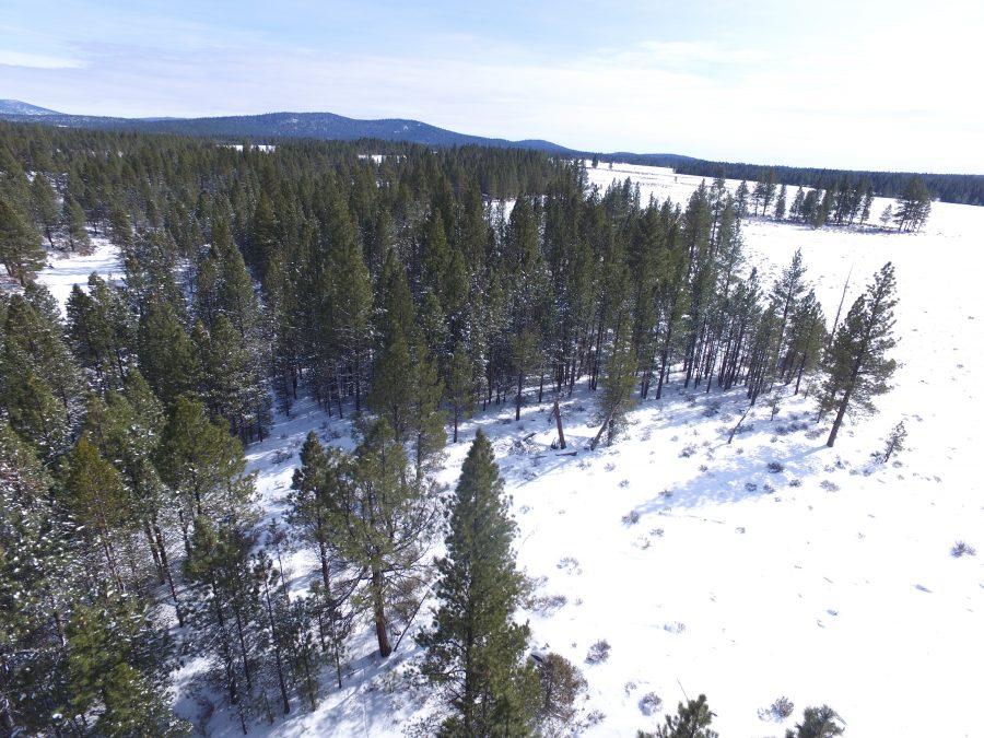 10 Acres! Klamath, OR–with Creek, Trees and Open Spaces on the property!!!!!