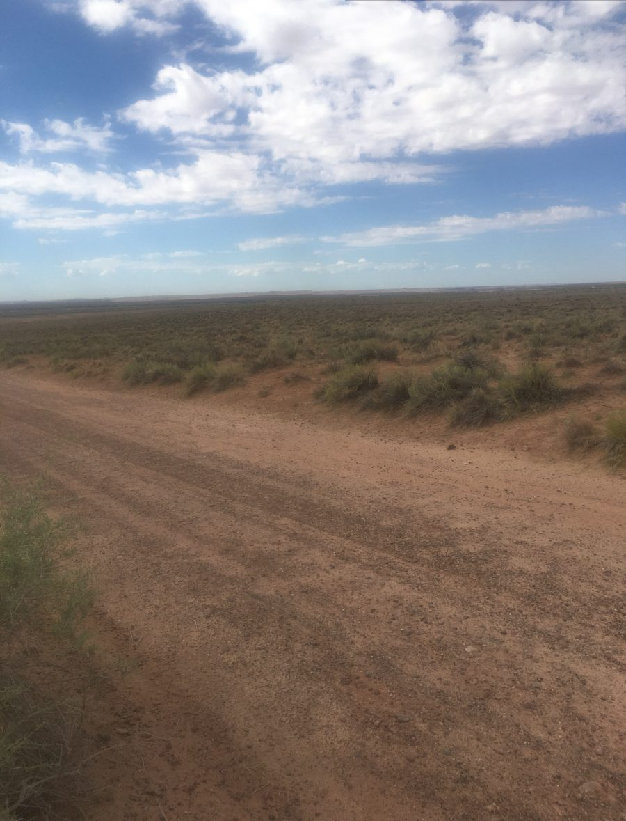 2.5 Acres in Sun Valley, AZ-Near the Painted Desert and Holbrook!! $79/month!!!