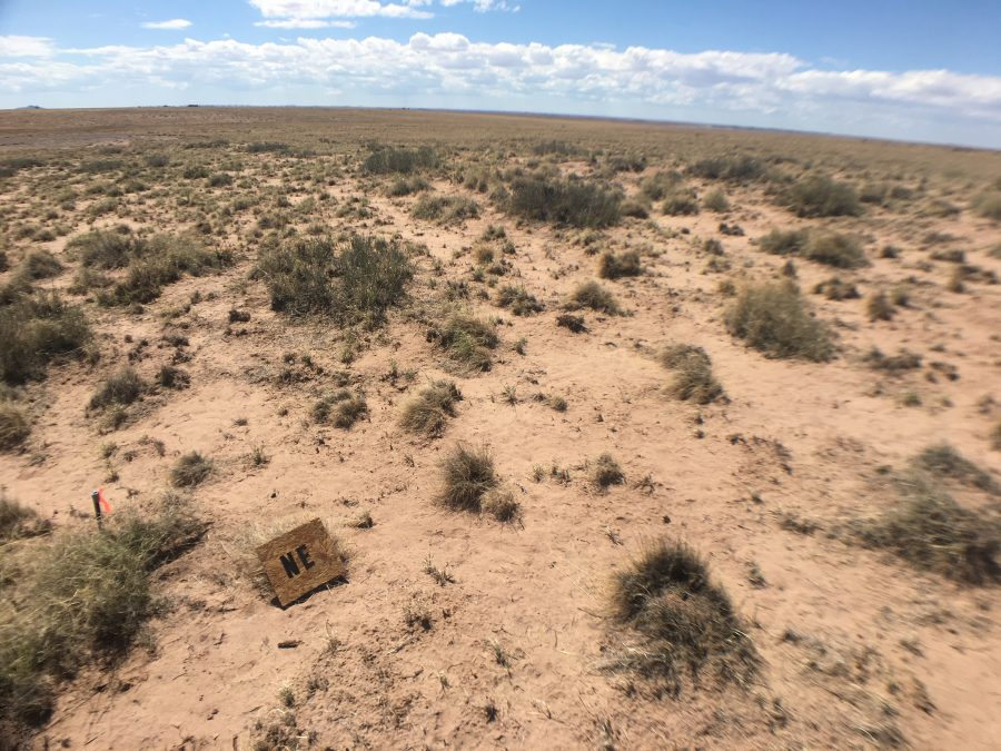 5 Acres in Navajo County, AZ-with WATER, *AND POWER- Near Holbrook and Natl Petrified Forest