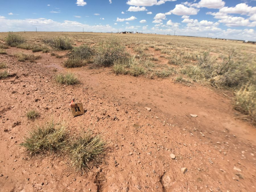 10 Acres Near Holbrook, AZ-Navajo County-Water and Power on the street!