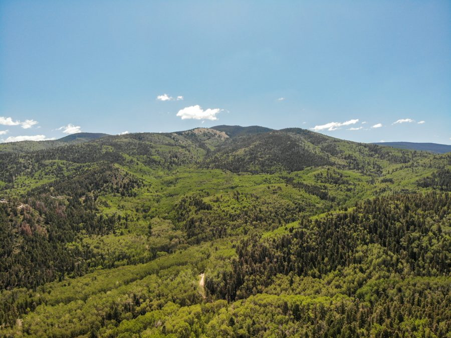 Gorgeous 5-Acre Colorado Property with Stunning Aspen and Pine Trees all over! SDCR at it's best!!!